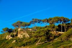 Fincain Mallorca Royalty Free Stock Photos