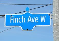 Finch σημάδι λεωφόρων στοκ φωτογραφία