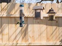 Finches przy dozownikami obrazy stock