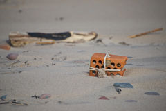 Find on the beach. Of Baltic sea Stock Images