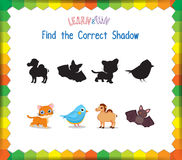 Find the correct Animals shadow.  Royalty Free Stock Photo