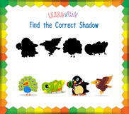 Find the correct Animals shadow.  Stock Image