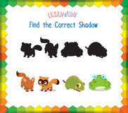 Find the correct Animals shadow.  Royalty Free Stock Image