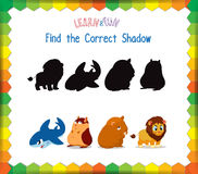 Find the correct Animals shadow Royalty Free Stock Image