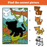 Find the correct picture, game for children. Jaguar. Find the correct picture, education game for children. Jaguar and background Stock Photography