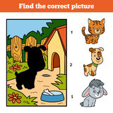 Find the correct picture. Little dog and background. Find the correct picture, education game for children. Little dog and background Royalty Free Stock Images