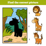 Find the correct picture. Little giraffe and background. Find the correct picture, education game for children. Little giraffe and background Stock Photos
