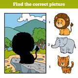 Find the correct picture. Little lion and background. Find the correct picture, education game for children. Little lion and background Royalty Free Stock Photography