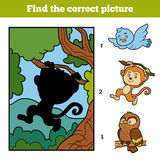 Find the correct picture. Little monkey and background. Find the correct picture, education game for children. Little monkey and background Royalty Free Stock Photos
