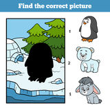 Find the correct picture. Little penguin and background. Find the correct picture, education game for children. Little penguin and background Royalty Free Stock Images
