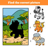 Find the correct picture. Little zebra and background. Find the correct picture, education game for children. Little zebra and background Royalty Free Stock Photo