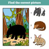 Find the correct picture. Malayan tapir and background. Find the correct picture, game for children. Malayan tapir and background Stock Images