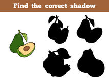 Find the correct shadow (avocado). Find the correct shadow, education game for children (avocado Royalty Free Stock Photos