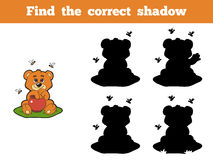 Find the correct shadow (bear and bees). Game for children: Find the correct shadow (bear and bees Royalty Free Stock Image