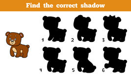 Find the correct shadow (bear). Find the correct shadow, education game for children (bear Stock Images