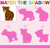 Find the correct shadow of the bear. Illustration of Find the correct shadow of the bear Stock Images