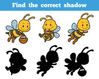 Find the correct shadow about bees Stock Image