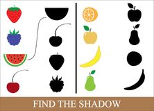 Find the correct shadow of berries and fruits. Game for children.  Stock Photo
