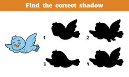 Find the correct shadow (bird). Find the correct shadow, education game for children (bird Royalty Free Stock Images