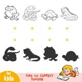 Find the correct shadow. Black and white animals. Find the correct shadow, education game for children. Black and white animals Stock Photography