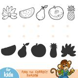 Find the correct shadow. Black and white fruits. Find the correct shadow, education game for children. Black and white fruits Royalty Free Stock Images