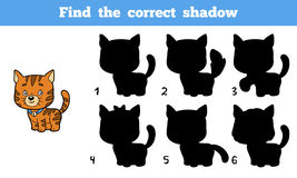 Find the correct shadow (cat) Stock Images