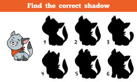 Find the correct shadow (cat) Stock Photo