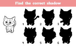 Find the correct shadow (cat) Stock Image