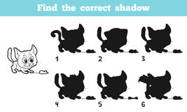 Find the correct shadow (cat) Royalty Free Stock Image
