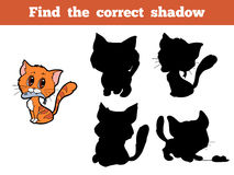 Find the correct shadow (cat) Stock Photography