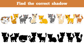 Find the correct shadow (cats). Game for children: Find the correct shadow (cats Stock Photography