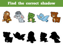 Find the correct shadow for children. Animal collection. Find the correct shadow, education game for children. Animal collection with owl, rabbit, frog, bird Royalty Free Stock Images