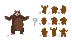 Find correct shadow. Childrens test. Big good bear. Kids educati. Onal rebus game Stock Images