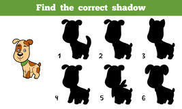 Find the correct shadow (dog). Find the correct shadow, education game for children (dog Royalty Free Stock Photo