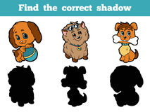 Find the correct shadow (dog). Game for children: Find the correct shadow (dog Stock Photos