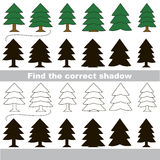 Find correct shadow for each object. Evergreen Trees set with shadows to find the correct one. Game to compare and connect objects and their true shadows Stock Photo