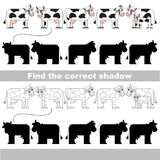 Find correct shadow for each object, the kid game. Cows set to find the correct shadow, the matching educational kid game to compare and connect objects and Royalty Free Stock Image