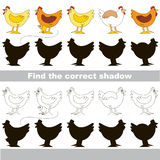 Find correct shadow for each object, the kid game. Hens set to find the correct shadow, the matching educational kid game to compare and connect objects and Royalty Free Stock Images