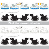 Find correct shadow for each object, the kid game. Small White Ducks set to find the correct shadow, the matching educational kid game to compare and connect Royalty Free Stock Image