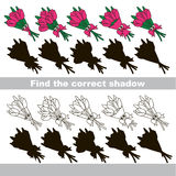 Find correct shadow for each object, the kid game. Tulip Bouquet Set to find the correct shadow, the matching educational kid game to compare and connect Royalty Free Stock Images