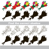Find correct shadow for each object, the kid game. Tulip Bouquet set to find the correct shadow, the matching educational kid game to compare and connect Stock Photos