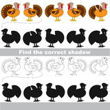 Find correct shadow for each object, the kid game. Turkeys set to find the correct shadow, the matching educational kid game to compare and connect objects and Royalty Free Stock Photography