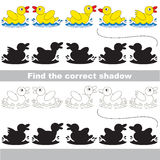 Find correct shadow for each object, the kid game. Yellow Ducks set to find the correct shadow, the matching educational kid game to compare and connect objects Royalty Free Stock Image