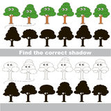 Find correct shadow for each object. Leaf trees set with shadows to find the correct one. Game to compare and connect objects and their true shadows, the Stock Photos