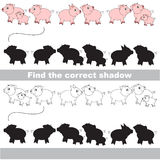 Find correct shadow for each object. Piggy set with shadows to find the correct one. Game to compare and connect objects and their true shadows Royalty Free Stock Photo
