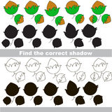Find correct shadow for each object, the set game. Hazelnuts set to find the correct shadow, the matching educational game to compare and connect objects and Royalty Free Stock Images