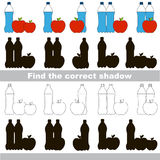 Find correct shadow for each object, the set game. Water and Apple set to find the correct shadow, the matching educational game to compare and connect objects Stock Photo