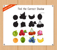 Find the correct shadow, education game for children - Fruits.  Stock Image