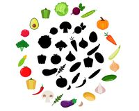 Find the correct shadow. Education game for children: vegetables Stock Images