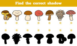 Find the correct shadow, education game about mushrooms. Find the correct shadow, education game for children. Set of edible mushrooms Royalty Free Stock Images